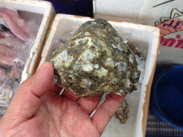 タイの殻付き牡蠣