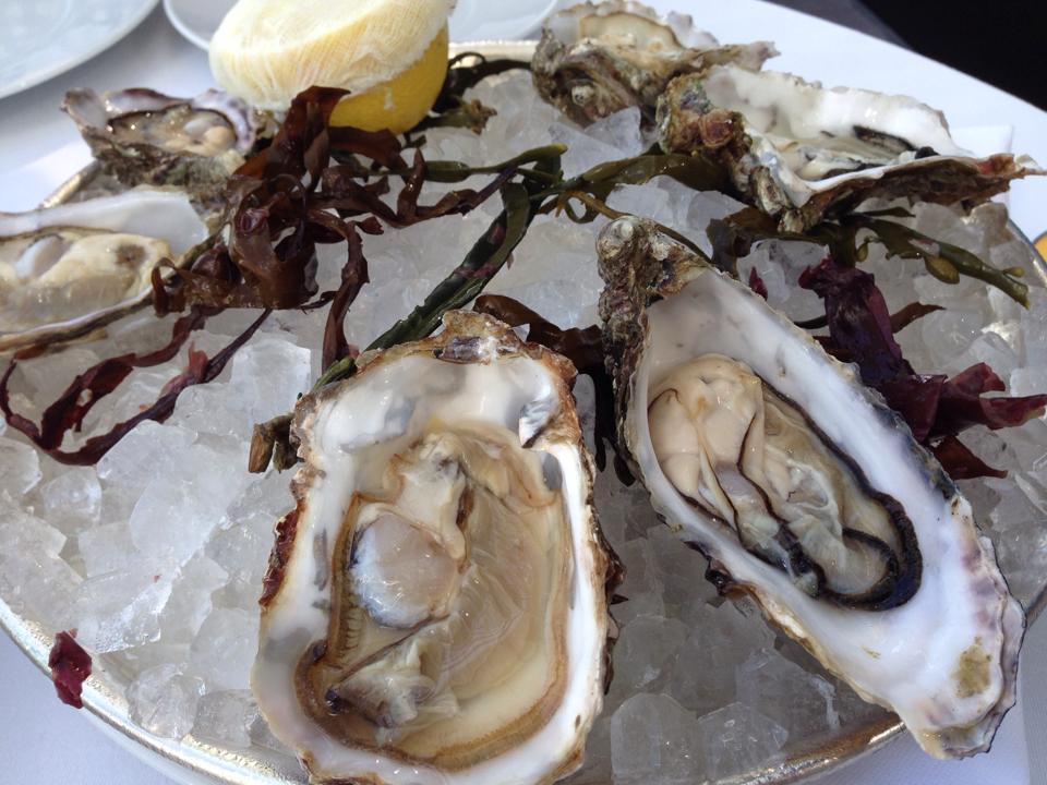 oyster_abudhabi